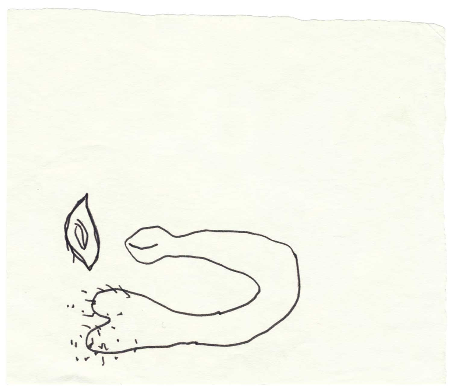 Mes dessins secrets, 1972/2011 - Additional view