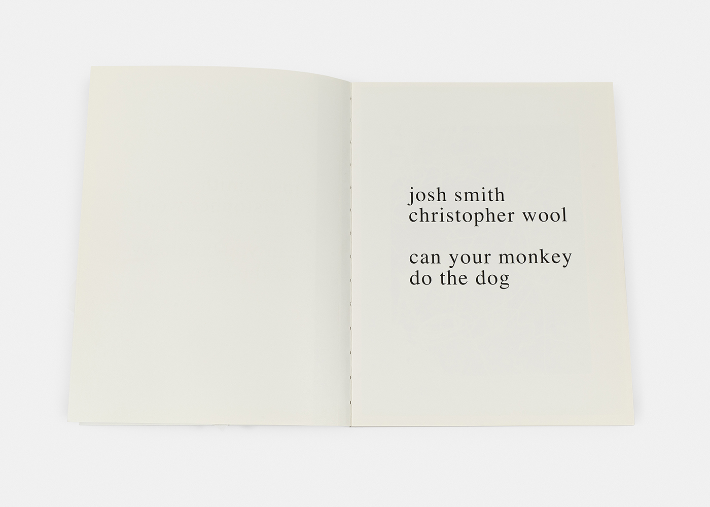 Josh Smith and Christopher Wool - can your monkey do the dog, 2007 -